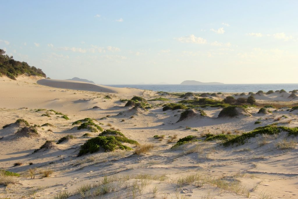 Sand dunes in the beach