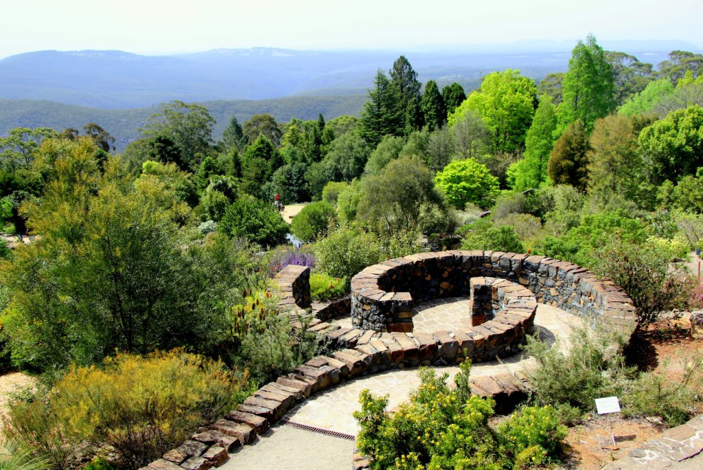 The Botanical Gardens at Mt Tomah with the evocative Blue mountains in the backdrop